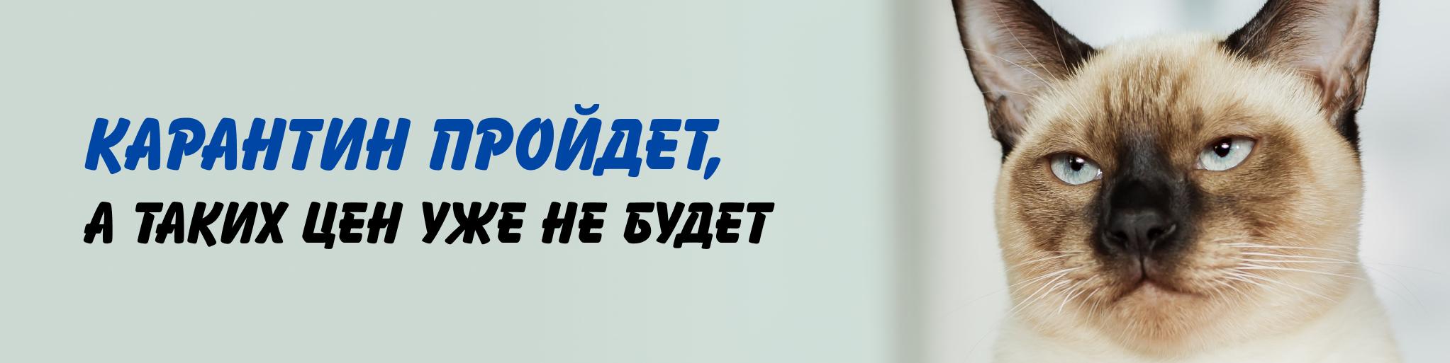 Yaroslavl_detskie