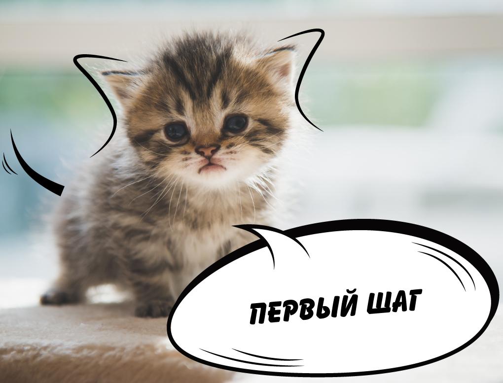 Предпродажа 1 год Славянка